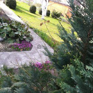 išpuoselėtas sodas, gerbūvis- vaismedžiai, vaiskrūmiai, daugiametės gėlės, didelis įstiklintas šiltnamis.